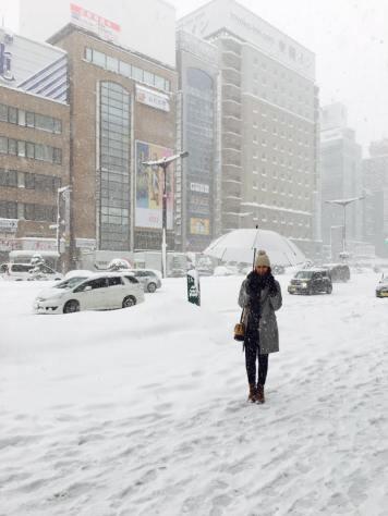 sapporo-city-snow-2016